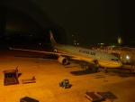 kiyohsさんが、ノイバイ国際空港で撮影した大韓航空 A330-323Xの航空フォト(飛行機 写真・画像)