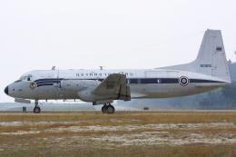 Hariboさんが、プーケット国際空港で撮影したタイ王国空軍 HS.748 Srs2/243の航空フォト(飛行機 写真・画像)