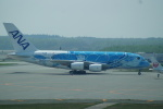 FRTさんが、新千歳空港で撮影した全日空 A380-841の航空フォト(飛行機 写真・画像)