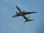 kiyohsさんが、成田国際空港で撮影した春秋航空日本 737-8ALの航空フォト(飛行機 写真・画像)