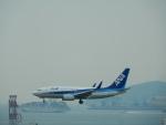 kiyohsさんが、香港国際空港で撮影した全日空 737-781の航空フォト(写真)