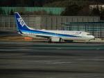 kiyohsさんが、成田国際空港で撮影した全日空 737-881の航空フォト(写真)