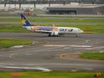 kiyohsさんが、羽田空港で撮影したスカイマーク 737-81Dの航空フォト(飛行機 写真・画像)