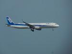 kiyohsさんが、羽田空港で撮影した全日空 A321-211の航空フォト(写真)