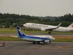 kiyohsさんが、成田国際空港で撮影したANAウイングス 737-54Kの航空フォト(飛行機 写真・画像)