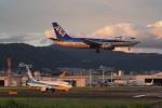 yonsuさんが、伊丹空港で撮影したANAウイングス 737-54Kの航空フォト(写真)