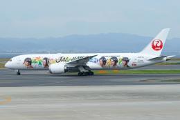Mar Changさんが、関西国際空港で撮影した日本航空 787-9の航空フォト(飛行機 写真・画像)