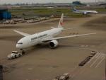 kiyohsさんが、羽田空港で撮影した日本航空 777-246/ERの航空フォト(写真)