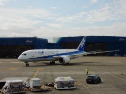 kiyohsさんが、シアトル タコマ国際空港で撮影した全日空 787-8 Dreamlinerの航空フォト(飛行機 写真・画像)