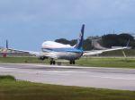 cooymdさんが、那覇空港で撮影した全日空 737-881の航空フォト(写真)