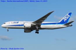 Chofu Spotter Ariaさんが、成田国際空港で撮影した全日空 787-8 Dreamlinerの航空フォト(写真)