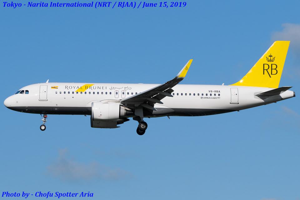 Chofu Spotter Ariaさんのロイヤルブルネイ航空 Airbus A320neo (V8-RBA) 航空フォト