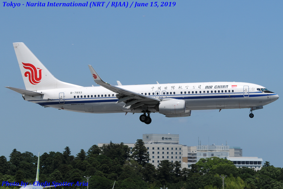 Chofu Spotter Ariaさんの中国国際航空 Boeing 737-800 (B-7893) 航空フォト