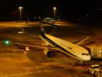 kiyohsさんが、羽田空港で撮影した全日空 767-381の航空フォト(飛行機 写真・画像)