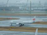 kiyohsさんが、羽田空港で撮影した日本トランスオーシャン航空 737-446の航空フォト(飛行機 写真・画像)