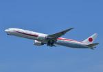 じーく。さんが、千歳基地で撮影した航空自衛隊 777-3SB/ERの航空フォト(飛行機 写真・画像)