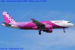 Chofu Spotter Ariaさんが、成田国際空港で撮影したピーチ A320-214の航空フォト(飛行機 写真・画像)