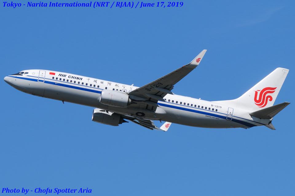 Chofu Spotter Ariaさんの中国国際航空 Boeing 737-800 (B-1219) 航空フォト