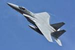 ちどりんさんが、新田原基地で撮影した航空自衛隊 F-15J Eagleの航空フォト(写真)