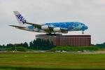 ふくそうじさんが、成田国際空港で撮影した全日空 A380-841の航空フォト(写真)