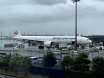 akinarin1989さんが、羽田空港で撮影した日本航空 777-346/ERの航空フォト(写真)
