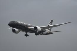 kuro2059さんが、台湾桃園国際空港で撮影したニュージーランド航空 787-9の航空フォト(飛行機 写真・画像)