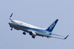 SGR RT 改さんが、羽田空港で撮影した全日空 737-881の航空フォト(写真)