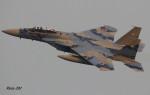 RINA-281さんが、小松空港で撮影した航空自衛隊 F-15DJ Eagleの航空フォト(写真)
