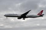 kuro2059さんが、台湾桃園国際空港で撮影したターキッシュ・エアラインズ 777-3F2/ERの航空フォト(飛行機 写真・画像)