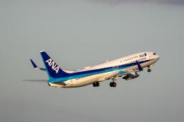 どりーむらいなーさんが、羽田空港で撮影した全日空 737-881の航空フォト(写真)