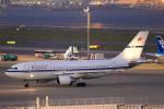 Hariboさんが、羽田空港で撮影したベルギー空軍 A310-222の航空フォト(写真)