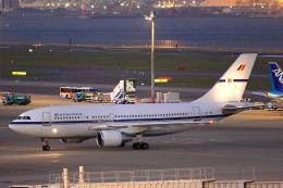 Hariboさんが、羽田空港で撮影したベルギー空軍 A310-222の航空フォト(飛行機 写真・画像)