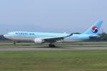 marariaさんが、青森空港で撮影した大韓航空 A330-223の航空フォト(写真)