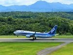 ナナオさんが、石見空港で撮影した全日空 737-8ALの航空フォト(写真)