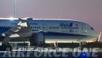 AIRFORCE ONEさんが、羽田空港で撮影した全日空 787-9の航空フォト(写真)