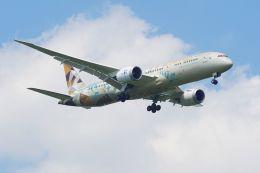 ladyinredさんが、成田国際空港で撮影したエティハド航空 787-9の航空フォト(飛行機 写真・画像)