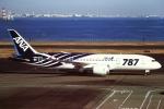 tassさんが、羽田空港で撮影した全日空 787-8 Dreamlinerの航空フォト(飛行機 写真・画像)