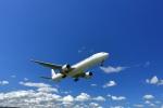 豚珍漢さんが、伊丹空港で撮影した日本航空 777-346の航空フォト(写真)