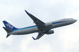 Hiro-hiroさんが、羽田空港で撮影した全日空 737-881の航空フォト(写真)