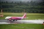 T.Sazenさんが、成田国際空港で撮影したピーチ A320-214の航空フォト(写真)
