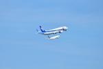 kurubouzuさんが、羽田空港で撮影した全日空 737-881の航空フォト(写真)