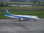 Tき/九州急行さんが、仙台空港で撮影した全日空 A321-211の航空フォト(写真)