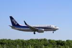 516105さんが、鳥取空港で撮影した全日空 737-781の航空フォト(写真)