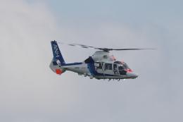 木人さんが、成田国際空港で撮影したオールニッポンヘリコプター AS365N3 Dauphin 2の航空フォト(飛行機 写真・画像)