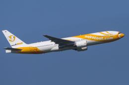 航空フォト:HS-XBF ノックスクート 777-200