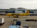 kiyohsさんが、シアトル タコマ国際空港で撮影したスピリット航空 A320-232の航空フォト(飛行機 写真・画像)