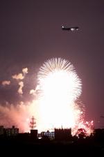 かぷちーのさんが、伊丹空港で撮影したANA 737-800の航空フォト(写真)