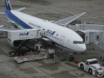くまのんさんが、羽田空港で撮影した全日空 777-281/ERの航空フォト(飛行機 写真・画像)