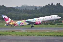 さくらの城南山。さんが、成田国際空港で撮影したサンデー・エアラインズ 757-21Bの航空フォト(写真)