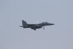 ANA744Foreverさんが、千歳基地で撮影した航空自衛隊 F-15DJ Eagleの航空フォト(写真)